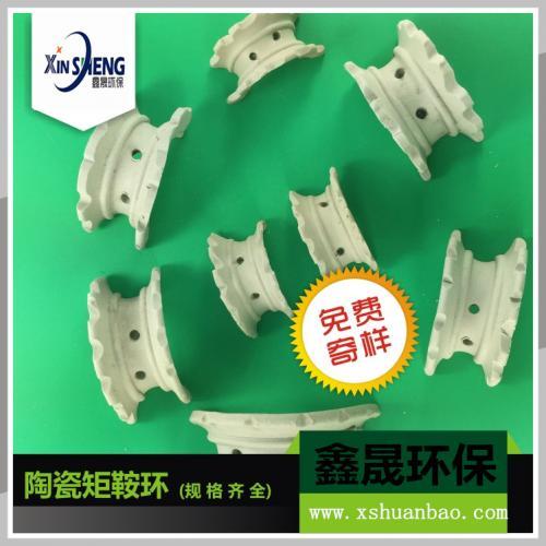 厂家直销优质化工填料 陶瓷散堆填料 陶瓷异鞍环 各种规格齐全